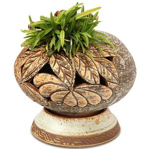 소엽풍란 도자기(보급종)