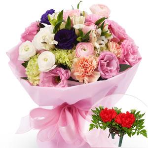 카네이션혼합꽃다발(코사지2개무료)