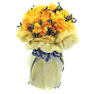 프리지아꽃다발2호(계절상품)