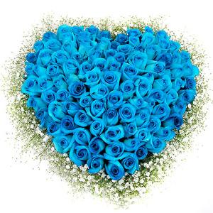파란장미100송이하트박스(예약배송)